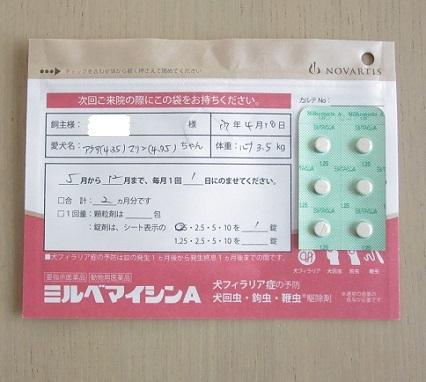 フィラリア検査170420④