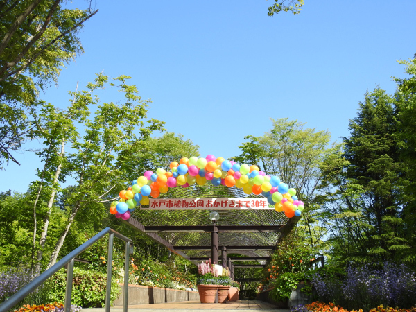 170502水戸市植物公園_13