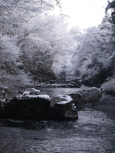 雪の吉田川