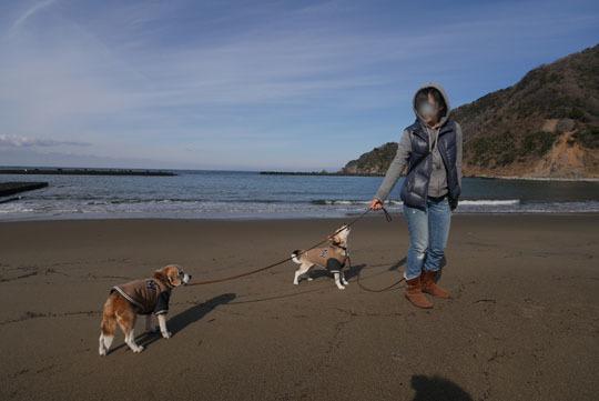 115宇久須の海岸