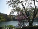 四尾連湖01-03