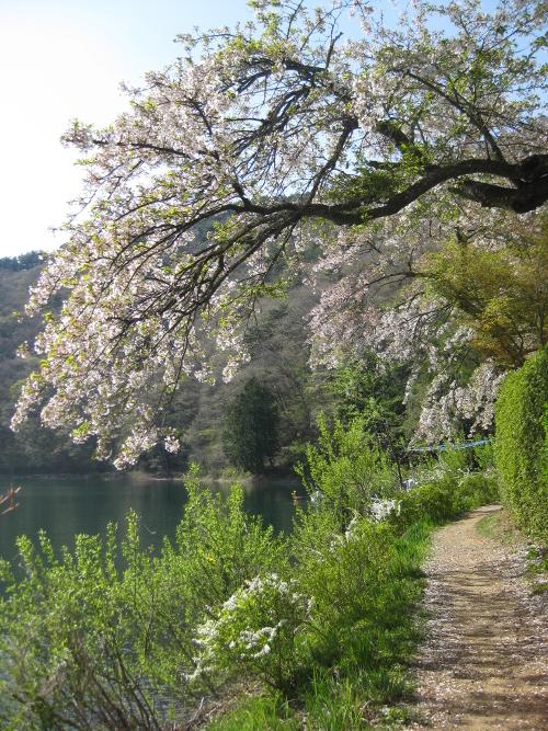 四尾連湖01-08