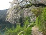 四尾連湖02-03