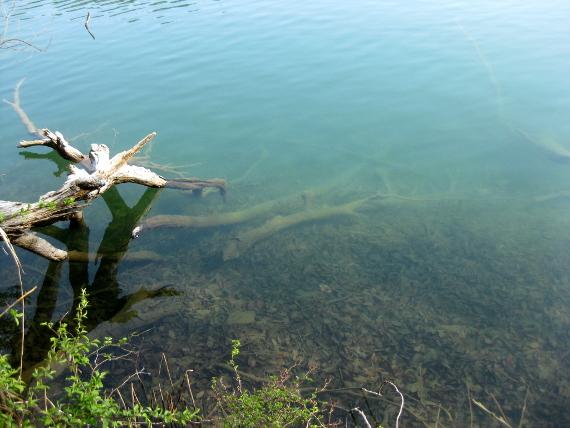 四尾連湖02-11