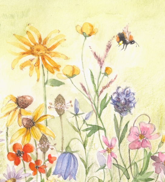 flower126虫1