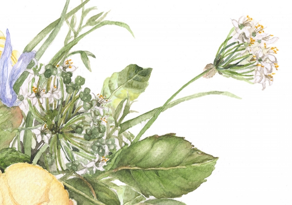flower1233l.jpg