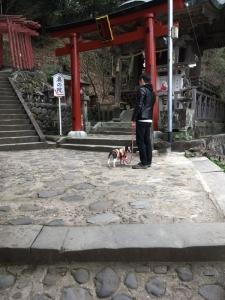 祐徳稲荷神社⑥