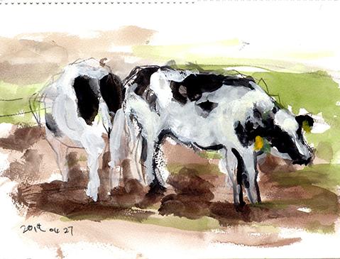 20170429牛