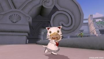 白猫セット
