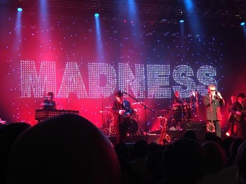 madness01.jpg