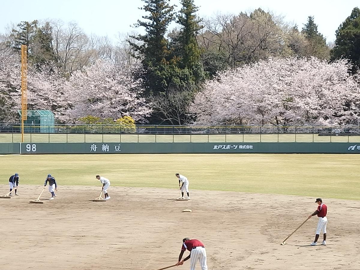 01_常陸大宮市民球場と桜