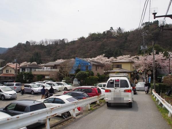 早川(3)