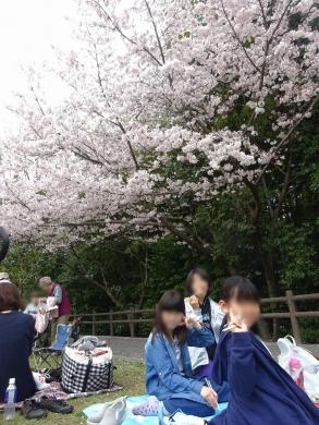 2017.04.09 花見 007