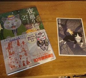20170326夜廻り猫2