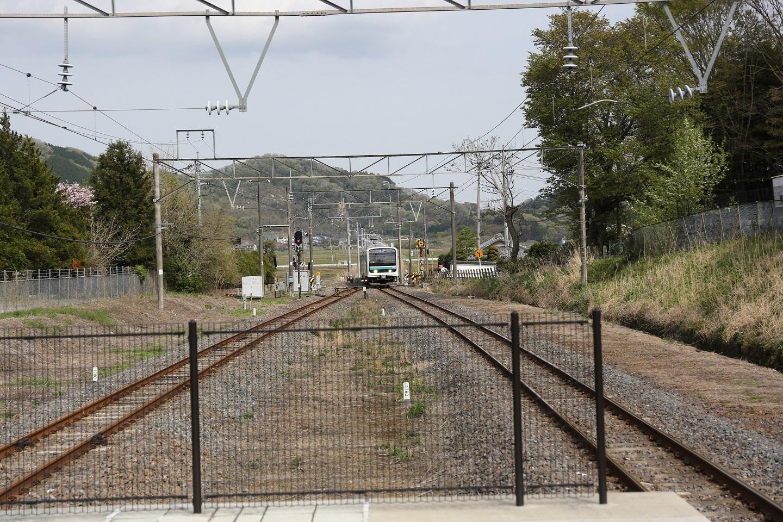 2017 4 20 桜の山を背に来る帰りの電車 ブログ用.jpg