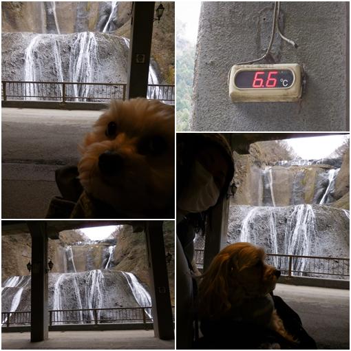 袋田の滝②