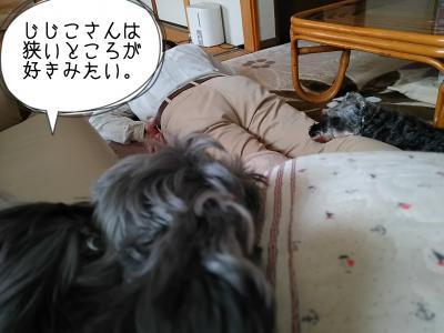 moblog_dc5a91d0.jpg