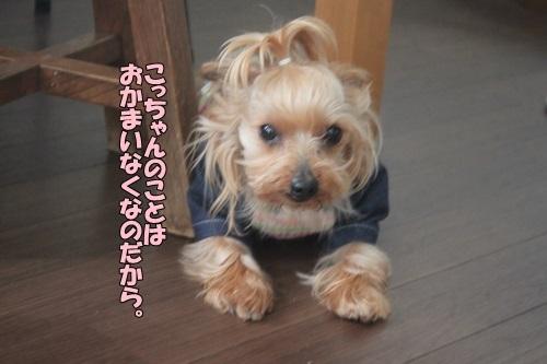 IMG_02310307.jpg