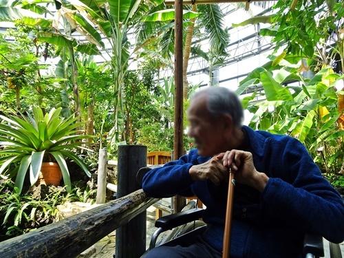豊橋総合動植物園