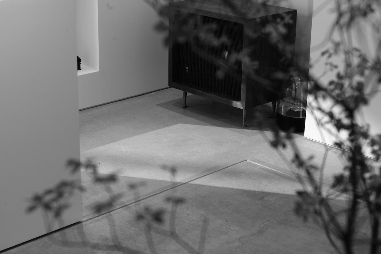 Shadow2.jpg