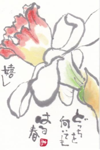 水仙 (2)