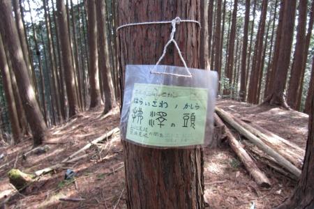 170304御岳~日の出山 (29)s