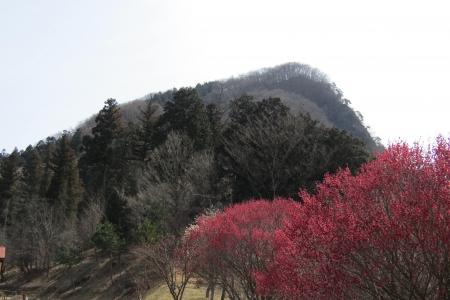 170318兄倉山 (3)s