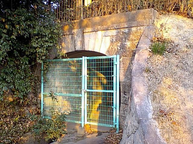 黄檗公園 (2)