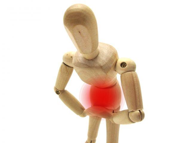 【盲腸】不要とされ切除されてきた「虫垂」 → 実は必要だった…進化を遂げてきた重要な器官の模様