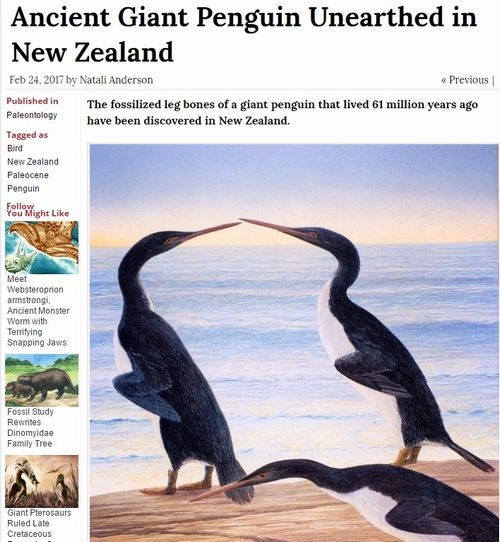 太古の昔、「超巨大ペンギン」は恐竜と共存していた…ニュージーランドで化石を発見