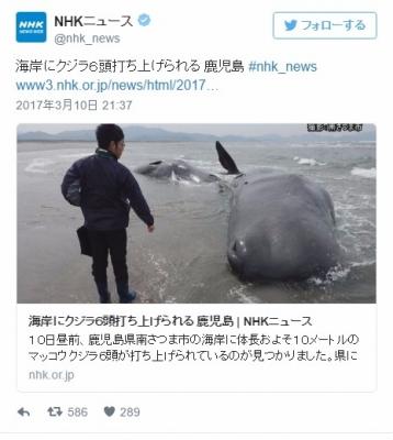 screenshot_2017-03-11_201-24-2724.jpeg