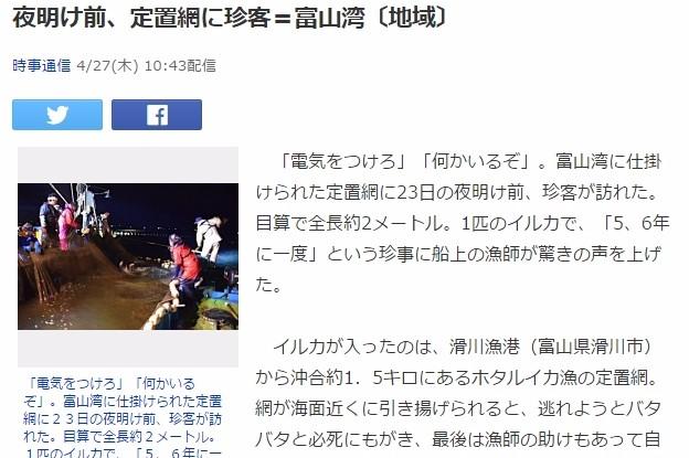 【日本海】富山湾の定置網に「イルカ」がかかる…珍事に漁師たちも驚き