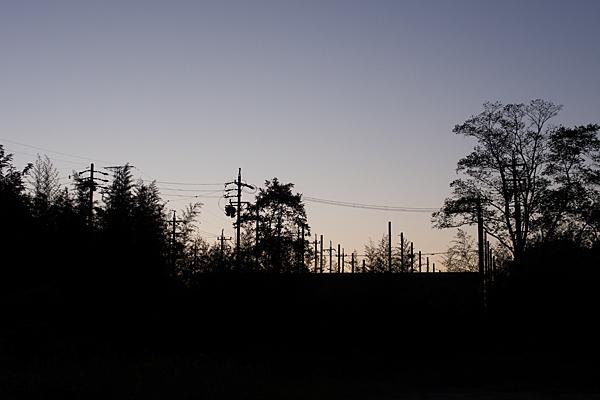 電柱訓練所