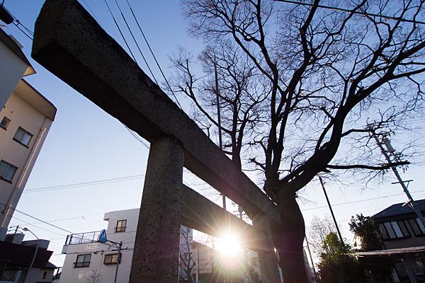 稲荷神社鳥居と太陽