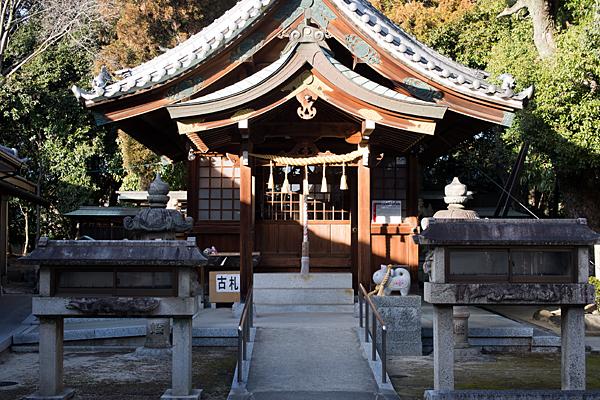 大井神社拝殿正面から