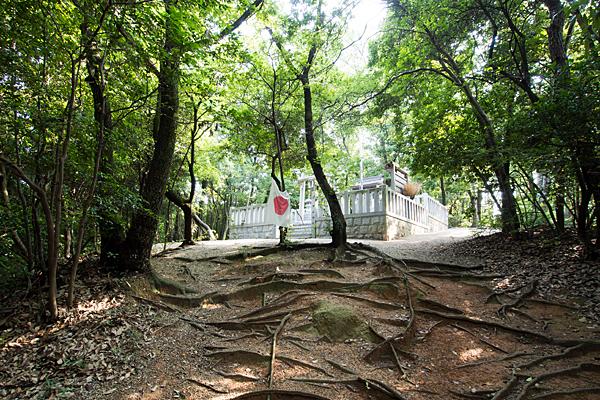 中山神社全景