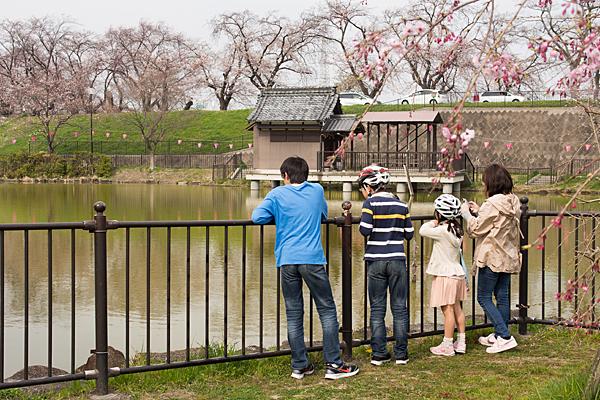 蛇池神社奥の院