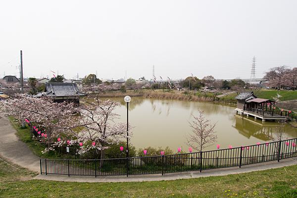 蛇池神社全景