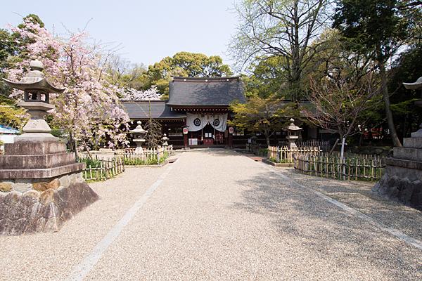 富部神社参道と拝殿