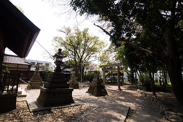 桜神明社境内の風景