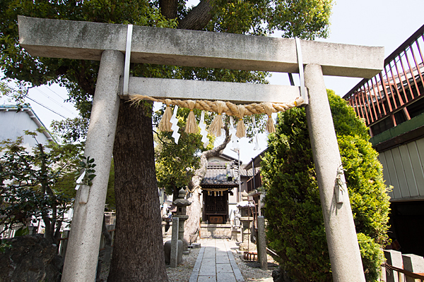 石神社鳥居と参道