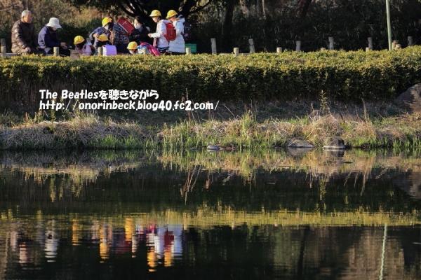 IMG_2017_02_28_9999_71.jpg