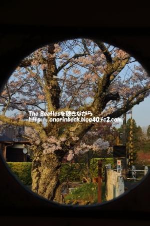 IMG_2017_04_14_9999_717.jpg