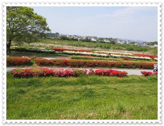 多摩川中央公園