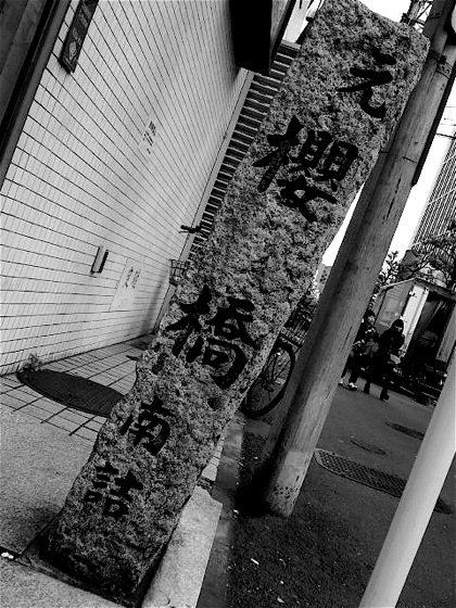 motosakurabashiDCIM0334.jpg