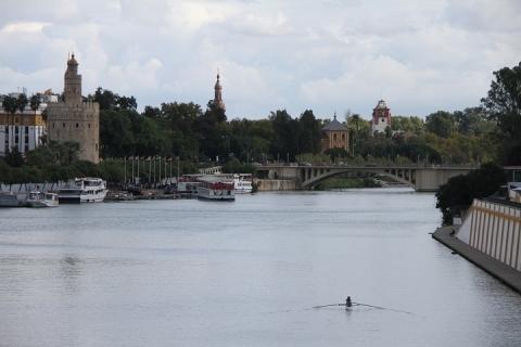 2446 Puente de Isabel II