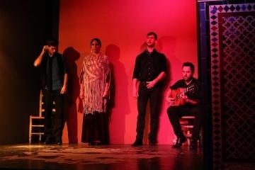2516 Auditorio Alvarez Quintero-M
