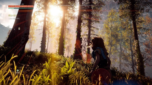 Horizon Zero Dawn™_20170311114054