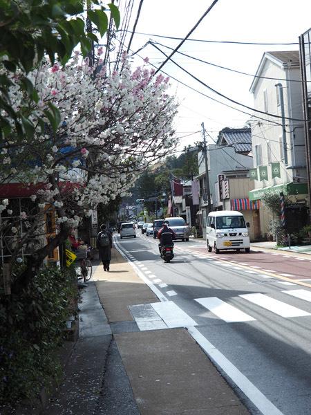 kitakamakura02 (3)