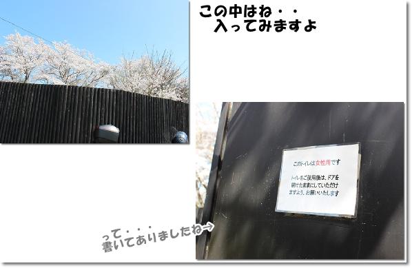 いたぶ駅の透明トイレ1-2